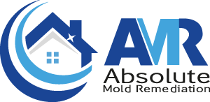 Absolute Mould Remediation Ltd. Logo
